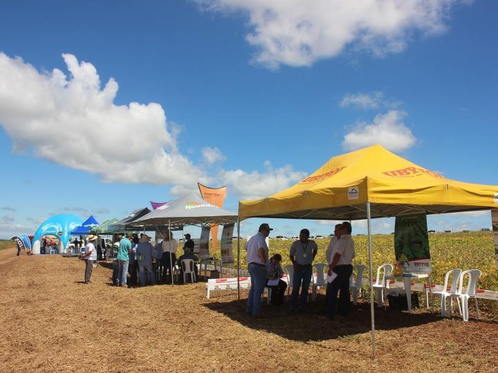 COPLACANA realiza o 3º Copla Soja na região de Avaré