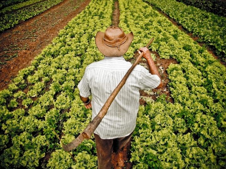 Agricultura familiar terá mais R$ 1 bi para investimento