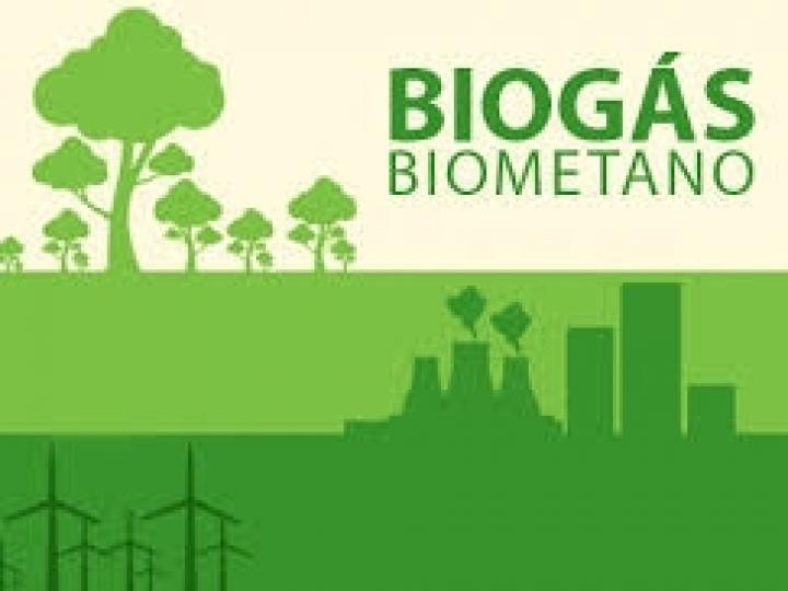 Setor do biogás inicia 2020 com mais de 400 usinas e crescimento de 40% ao ano