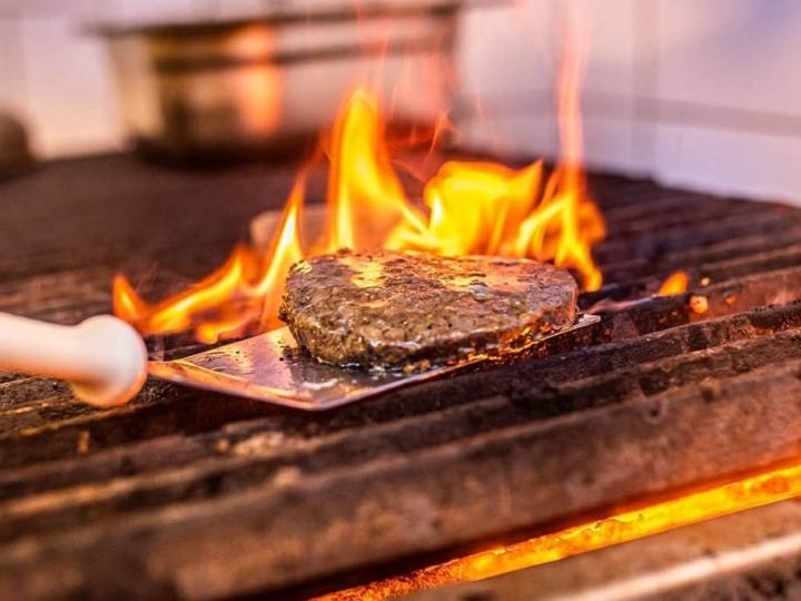 Pesquisa desenvolve produtos vegetarianos enriquecidos com fibra de caju