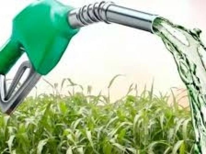 Ministra defende parceria entre Brasil e Índia na produção de etanol