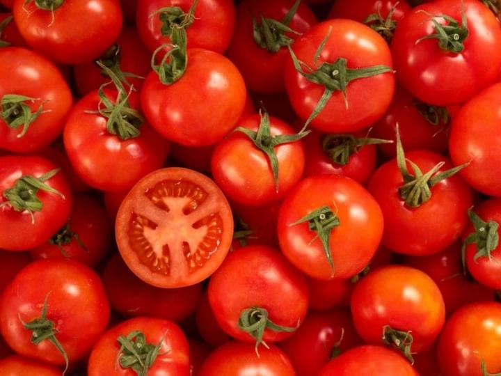 Uso de vegetais como adubo verde é uma ótima opção para cultivo de tomate orgânico