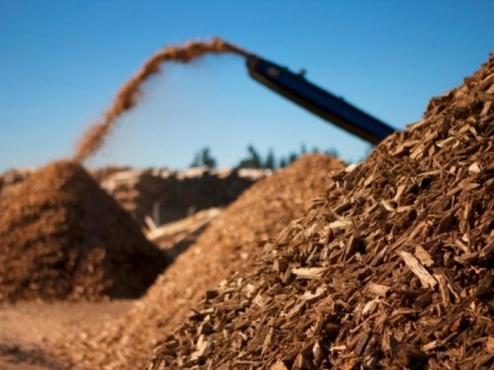 Geração de usinas a biomassa cresce 3% em 2019