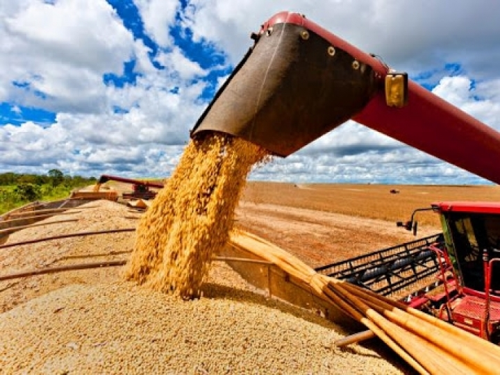 Novo recorde de grãos que chega a 251mi de toneladas
