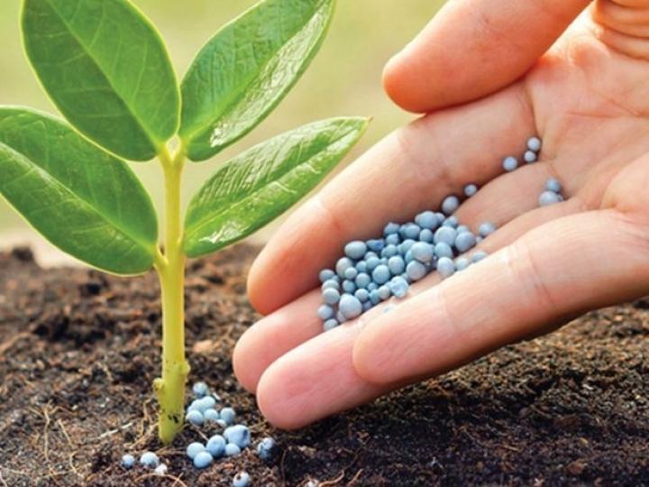 Abisolo integra comitê técnico do MAPA que elabora programa de autocontrole na produção de fertilizantes