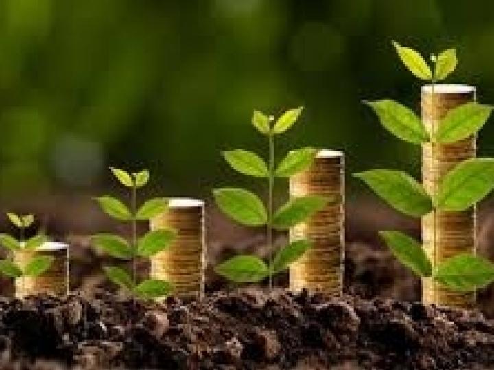 Crédito rural na atual safra atinge R$ 116,7 bi