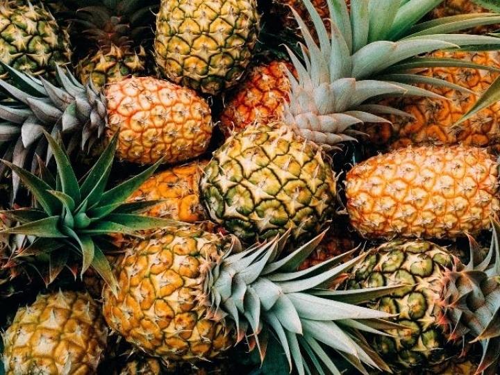 Potencial brasileiro na produção de abacaxi