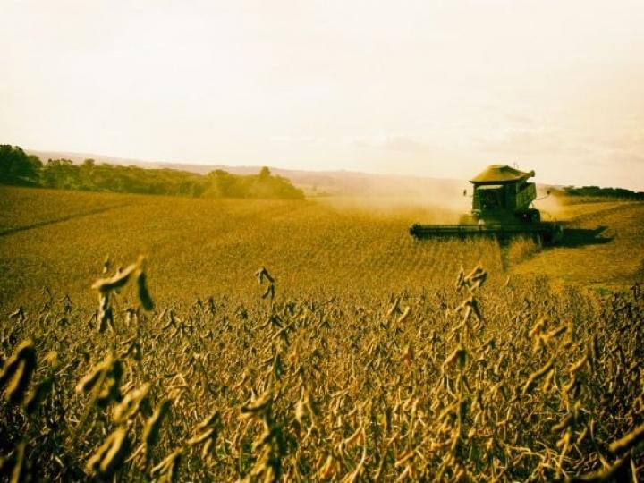 Encontros regionais para reunir propostas para o Plano Agrícola e Pecuário 2020/2021