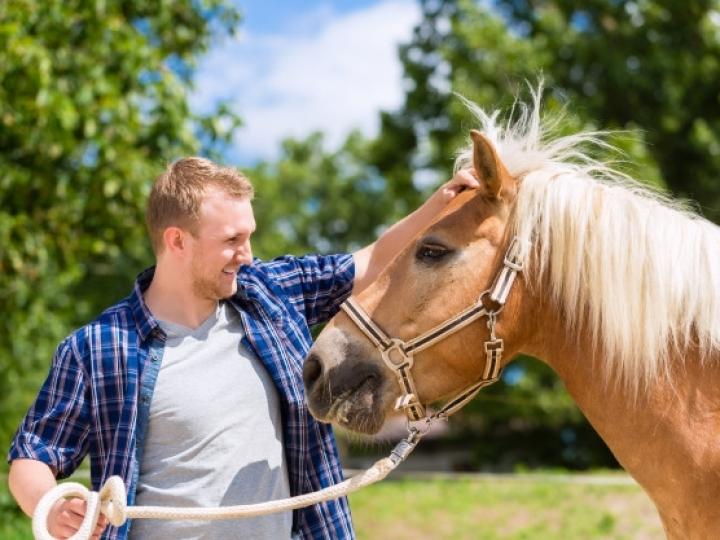 Como cuidar dos animais em tempos de coronavírus