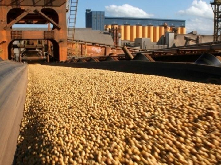 ANEC sobre Coronavírus: Panorama do setor exportador de grãos mediante pandemia