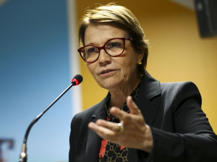Ministra discute com adidos agrícolas cenários para o setor após a pandemia