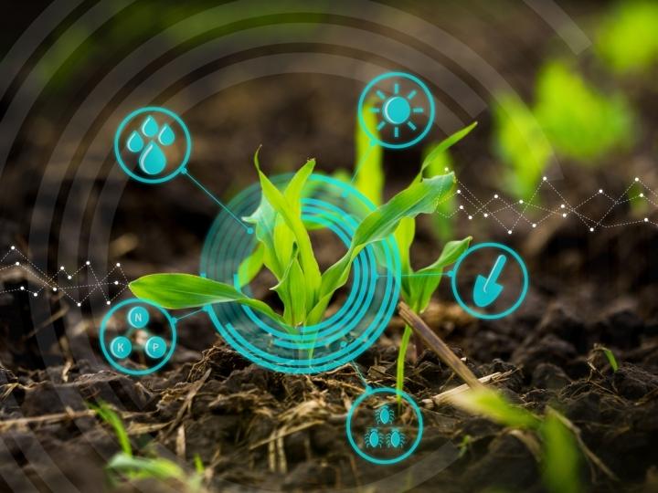 Strider promove encontros online sobre agricultura digital
