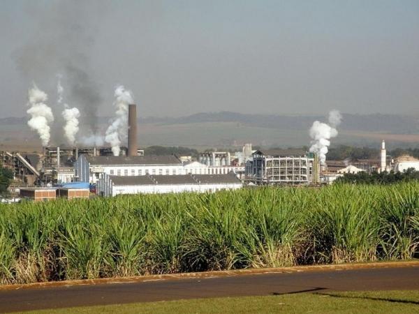 CPE terá sede na Faculdade de Ciências Agrárias e Veterinárias da Unesp em Jaboticabal; pesquisadores também vão atuar nas áreas de biotecnologia e resistência de planta (Foto: Wikimedia Commons)