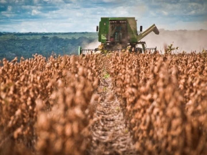 Grandes empresas buscam startups para apoiar cadeia agrícola durante a Covid-19