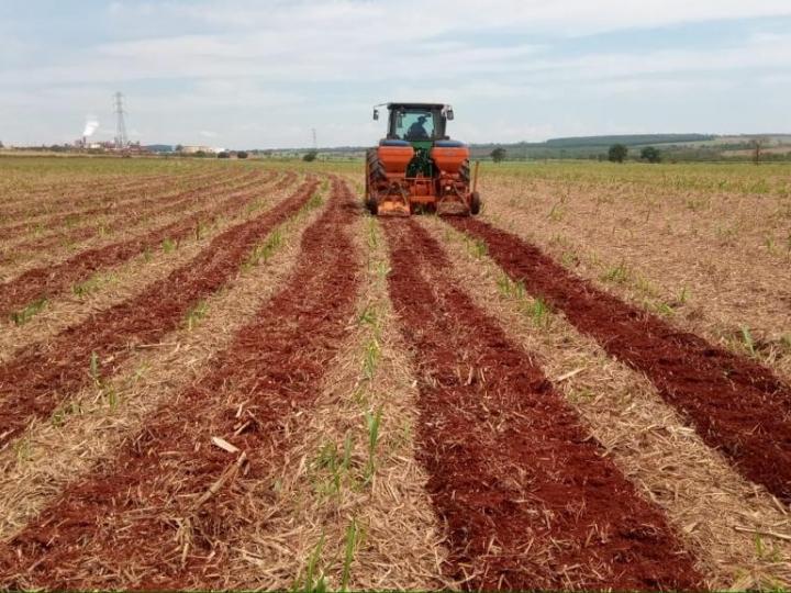 Incorporação da palha reduz perdas e evita transtornos para usinas e produtores