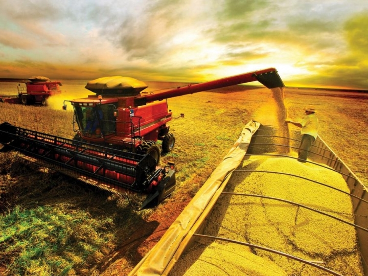 PIB do agronegócio cresce 2,42% no primeiro bimestre
