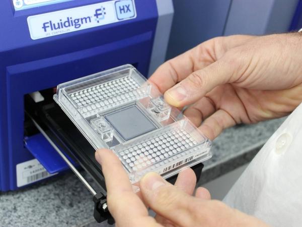 Embrapa já analisou mais de 1,5 mil amostras. Foto: Divulgação