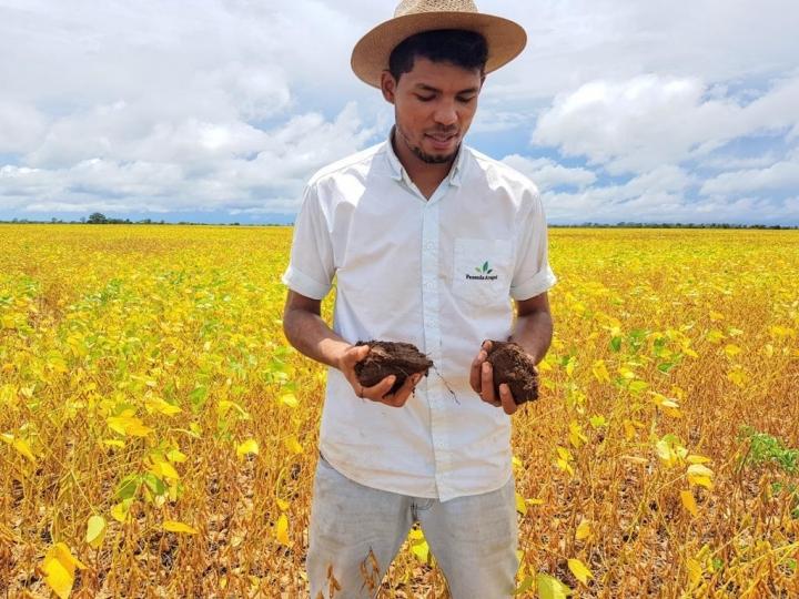 Adubo Biológico é solução para microbioma do solo