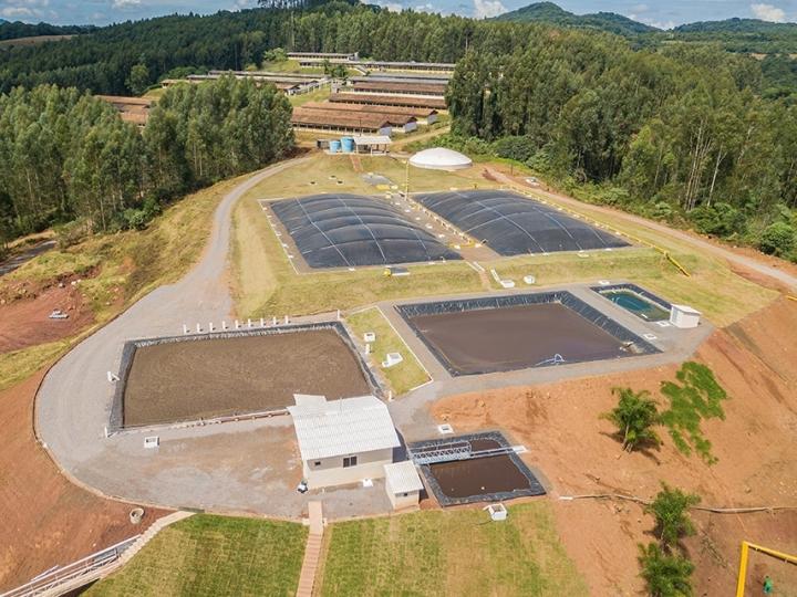 Energia, fertilizante e água a partir de dejetos suínos