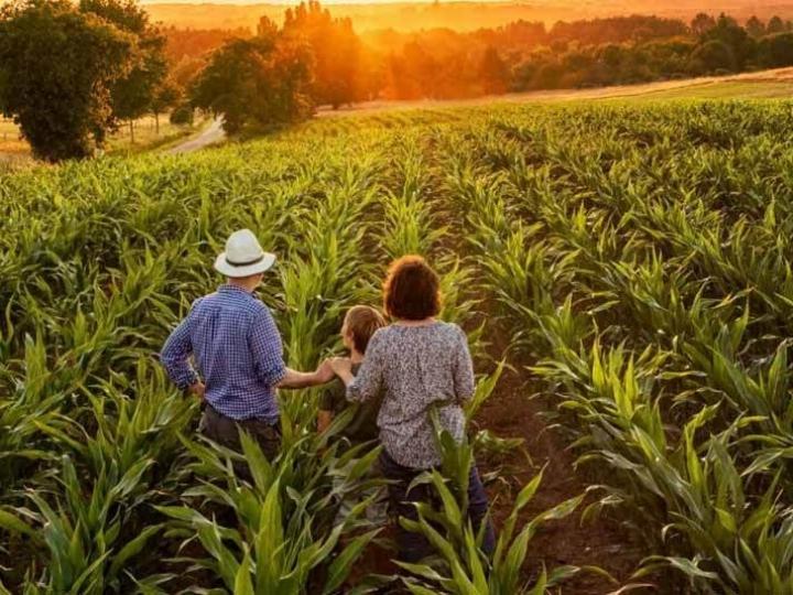 Governo Federal investe R$ 220mi para suprir agricultores familiares