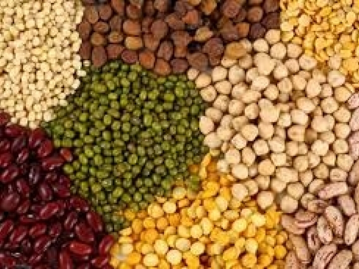 ANEC: Setor exportador de grãos mediante pandemia de Coronavírus