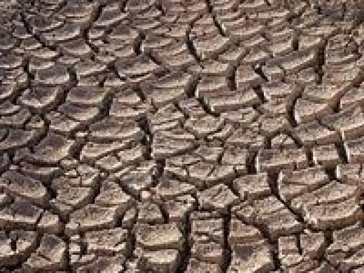Renegociação de financiamentos para agricultores familiares atingidos pela seca