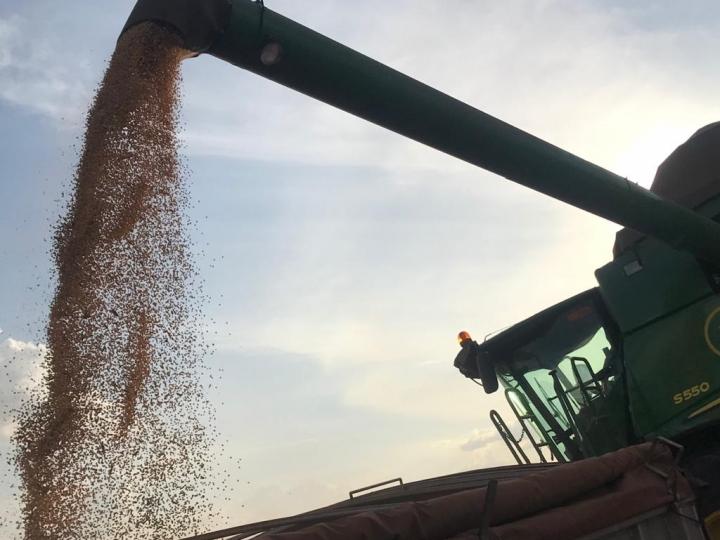 Recorde da produção de grãos no país: 250,5 milhões de toneladas