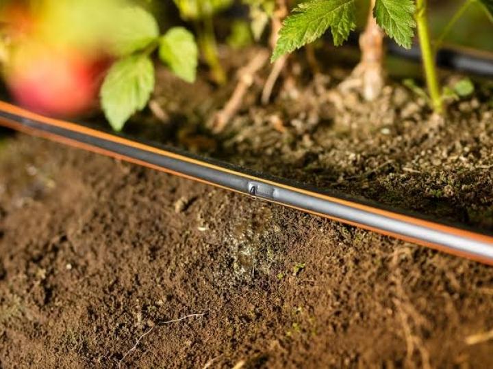 Netafim traz o  primeiro tour virtual de irrigação inteligente