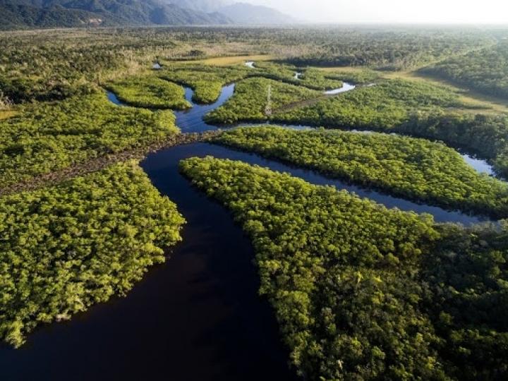 Amazônia e desenvolvimento na região