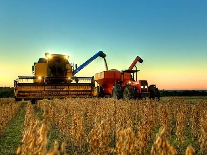 Produção de grãos deve atingir 251,4 mi de toneladas