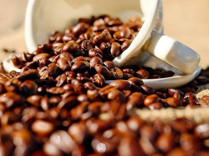 Nova fintech facilita acesso ao crédito para produtores de café