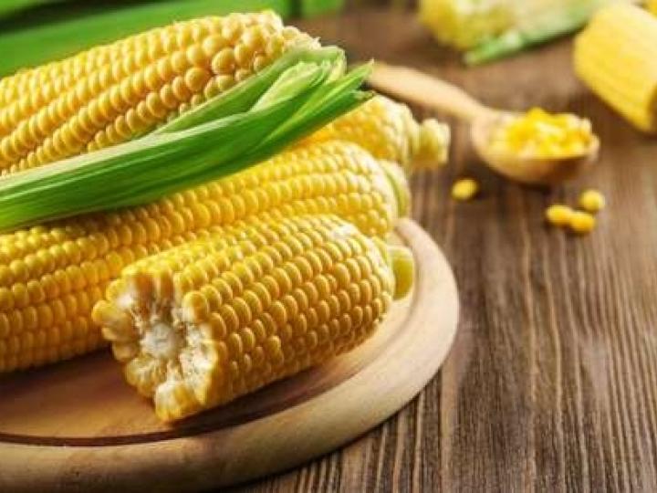 Com recordes de valores de soja e milho, VBP de 2020 é estimado em R$ 716,6 bilhões