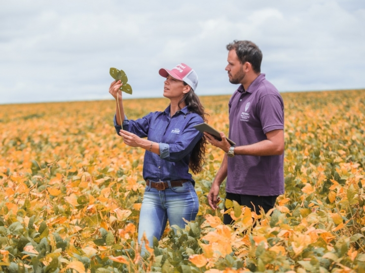 Agricultura digital otimiza lavouras de soja