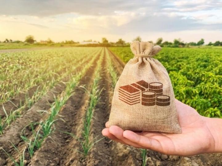 Contratação do crédito rural tem desempenho recorde no primeiro mês, com mais de R$ 24 bilhões