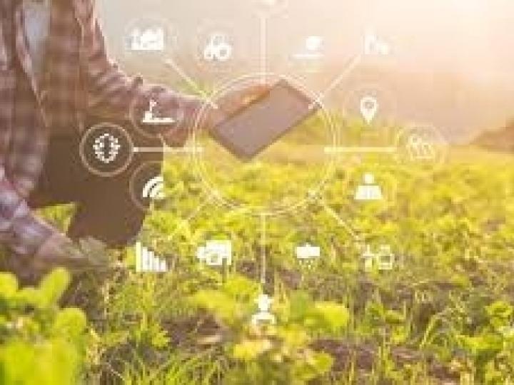 Agricultura digital brasileira: avanço e desafios