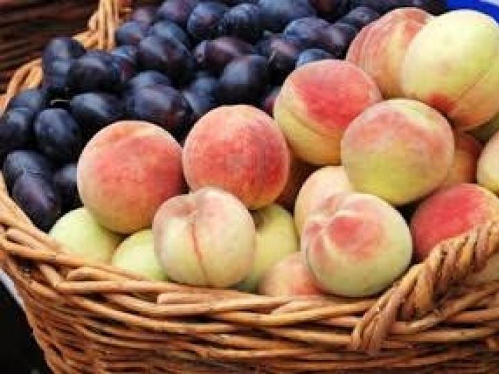 Projeto Monitor do Seguro Rural irá avaliar grupo de oito frutas