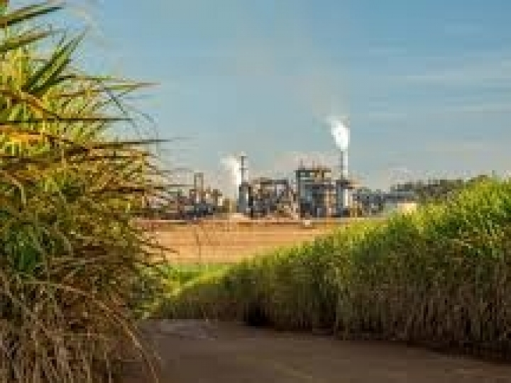 Consultado pelo governo, setor sucroenergético rejeita prorrogação da isenção do etanol dos EUA