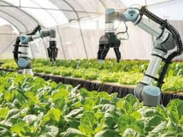 Programa levará tecnologias 4.0 para o agronegócio