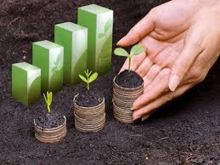 PIB do agro é destaque no 2º trimestre de 2020