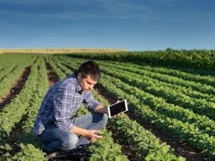 Mapa vai fomentar a qualificação dos peritos agrícolas que trabalham no seguro rural