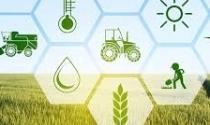 Agricultura de precisão: Até 2025 setor terá receita de US$ 12,8 bi