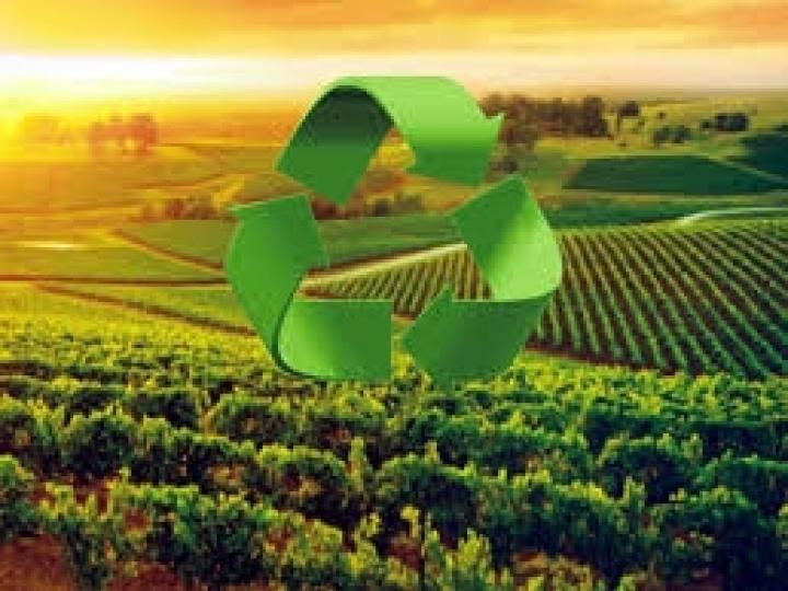 Curso gratuito sobre práticas agrícolas sustentáveis