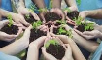 Edital vai selecionar 24 cooperativas agropecuárias para promover a intercooperação