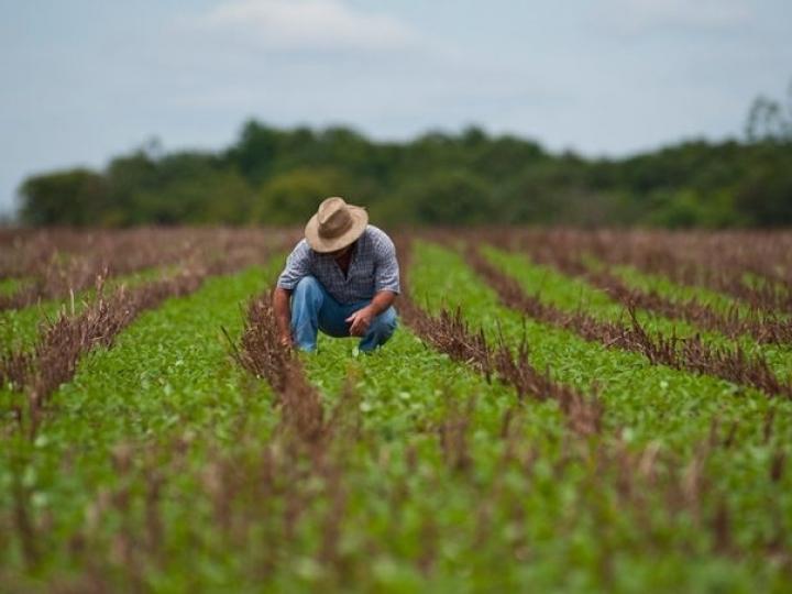 Crédito beneficia produtores rurais