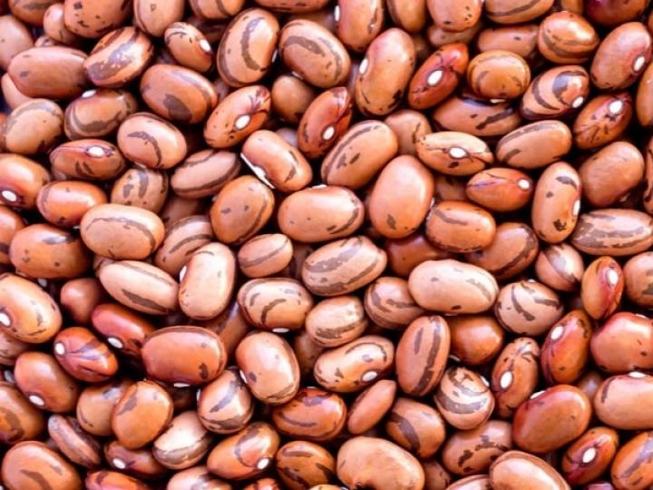 Sementes de feijão para cultivo da safra 2021