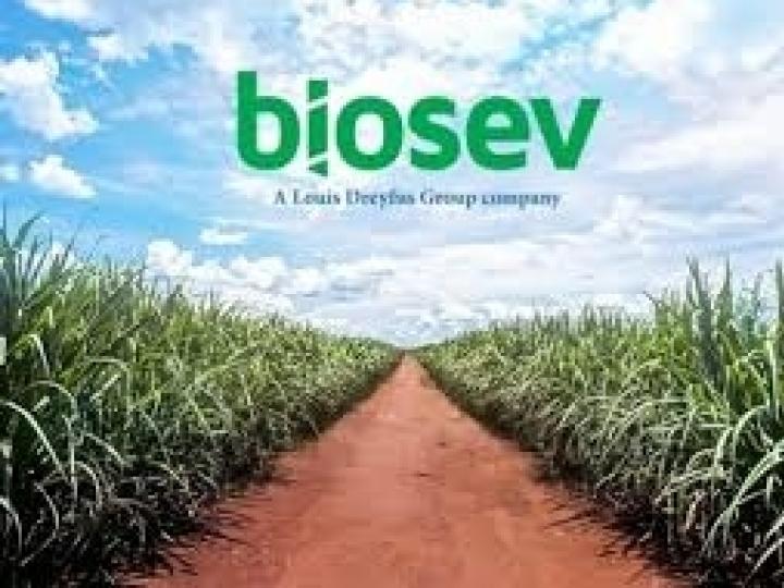 Biosev registra lucro líquido de R$ 155,5 milhões no 6M21