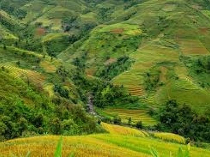 FAESP auxiliará produtores na regularização ambiental