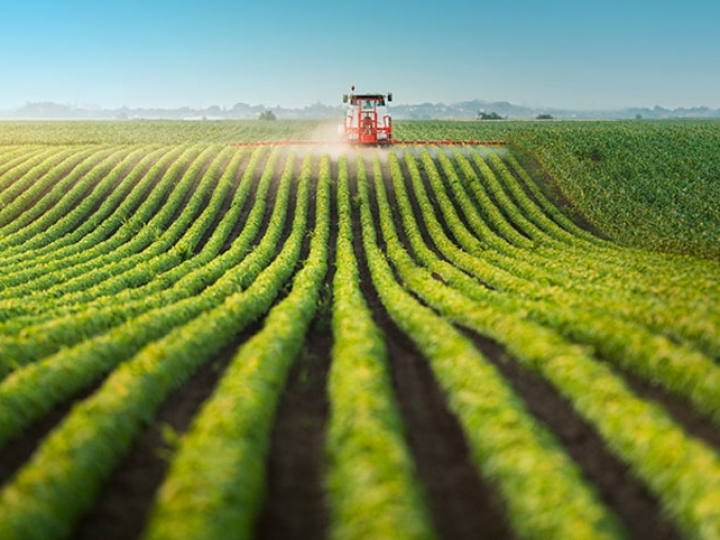 Pesquisa da ABAG mostra a percepção atual da inovação e competitividade no agronegócio