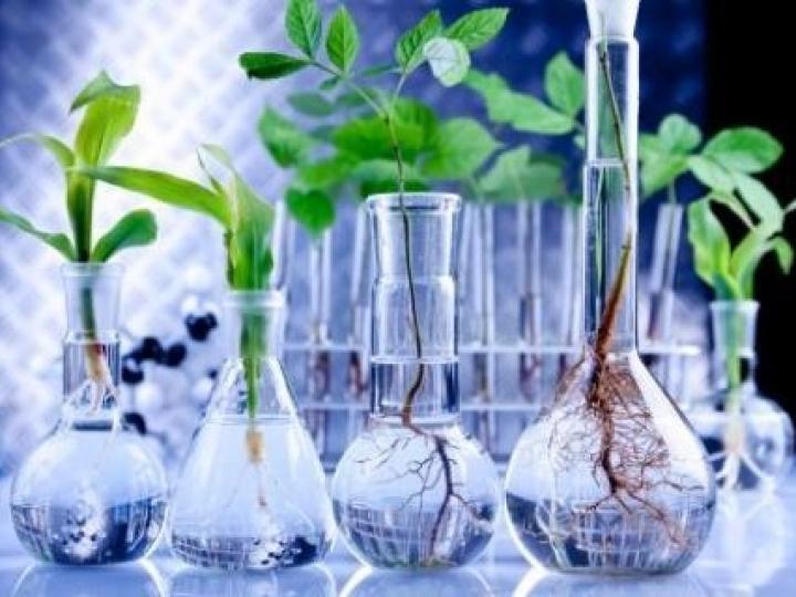 Embrapa apresenta biotecnologias visando parceria com empresas do setor agroindustrial
