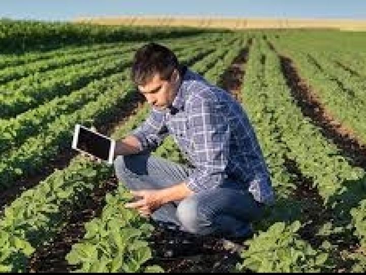 Iniciativa leva gratuitamente informações e conteúdos de alta qualidade a agricultores